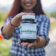 Lamifaren в Казахстане  group on My World
