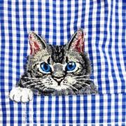 00cats.ru группа в Моем Мире.