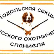 Подольская секция Русского охотничьего спаниеля группа в Моем Мире.
