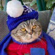 Ирина Климентьевна on My World.