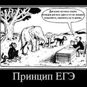 Surayyo Musakhanova on My World.